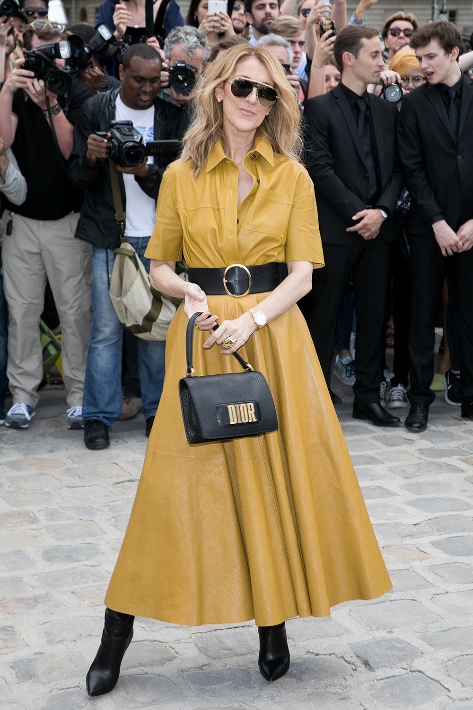 Celine-Dion-paris-dior-yellow-dress